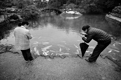 street bridge winter blackandwhite japan garden photographer candid sony takamatsu koi getty editorial 日本 carp kagawa 冬 gettyimages 公園 橋 flickrvision ritsurin 白黒 鯉 香川 高松 スナップ ストリート 写真家 apsc 栗林 nex7 sel1018 e1018mmf4oss ©jakejung