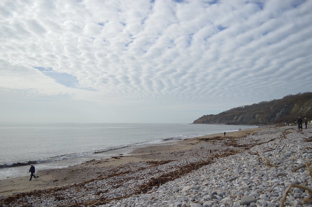 a picture of lyme regis pebble beach
