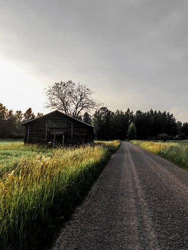 old sunset sun tree grass barn forest suomi finland cloudy country dirt dirtroad