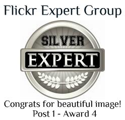 Silver level Award