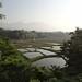 田切地形の田園風景