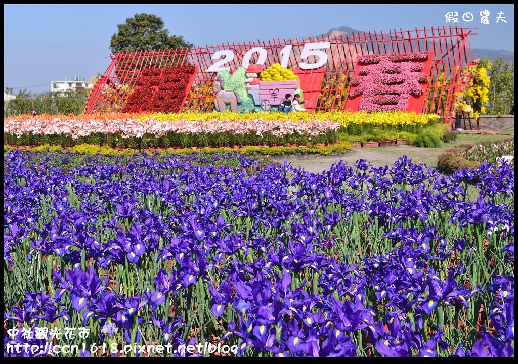 中社觀光花市DSC_1761