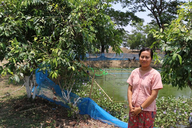 Hatchery manager, Thin Pa Pa Tun, Myanmar. Photo by Toby Johnson, WorldFish.