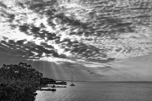 bw cloud sky sea cove pier boat sun ray light mackeral