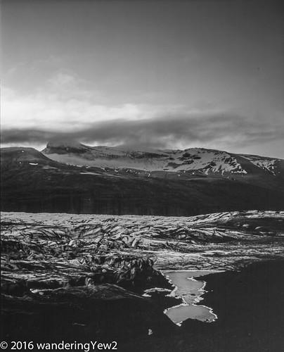 blackandwhite 120 mamiya film mediumformat iceland nationalpark glacier filmscan mamiya7ii glaciallagoon svínafellsjökull svínafellsjökullglacier vatnajökullnationalpark