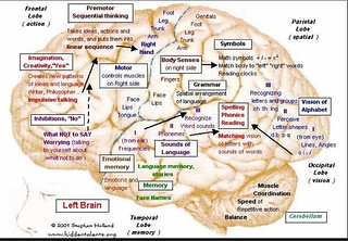 hiddentalents.org brain map