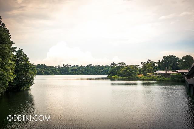 River Safari - The River flows