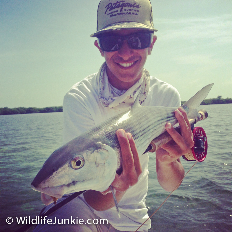 Bonefish on Fly