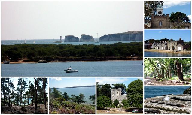Brownsea Island 2013B