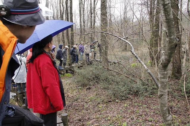 ハンノキ林の中で,ハンノキや湿原性の植物について説明があった.
