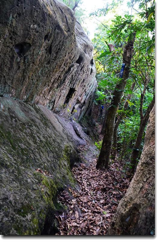 千年海底石