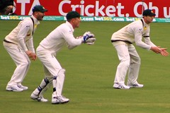cricket, test cricket, sports, team sport, player, bat-and-ball games, ball game, athlete,