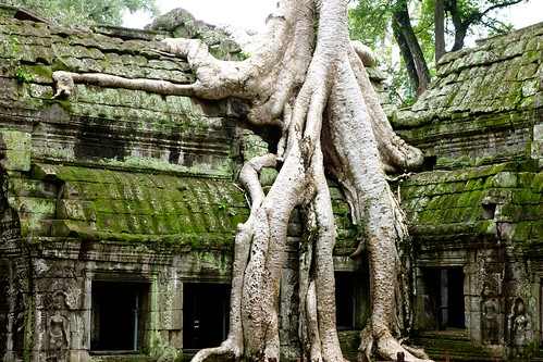 Look how the roots merge with the roof (Ta Prohm, Angkor)