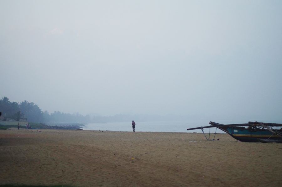 beach in negombo