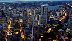 West by Northwest: City Lights