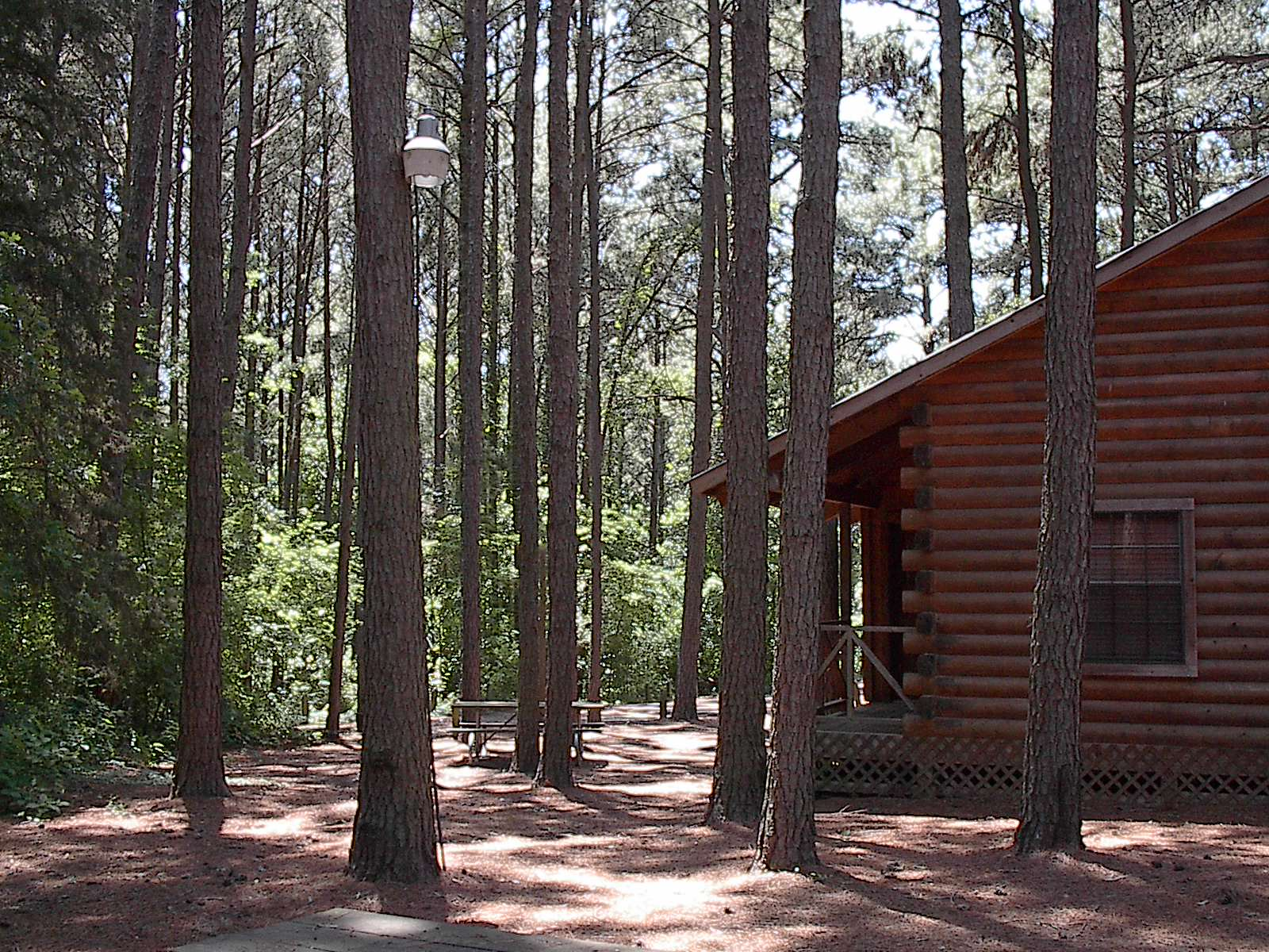 Elevation of bullard tx usa maplogs for Texas cabins in the woods