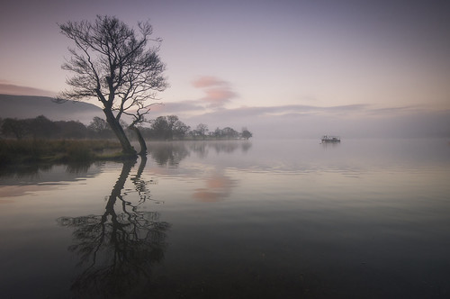 The Platform by Mark Littlejohn