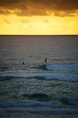 Gold Coast _D805180