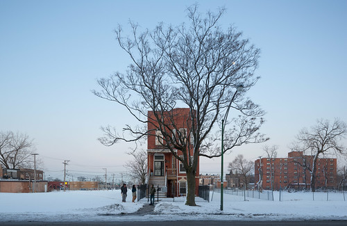 Residential Building, Tree