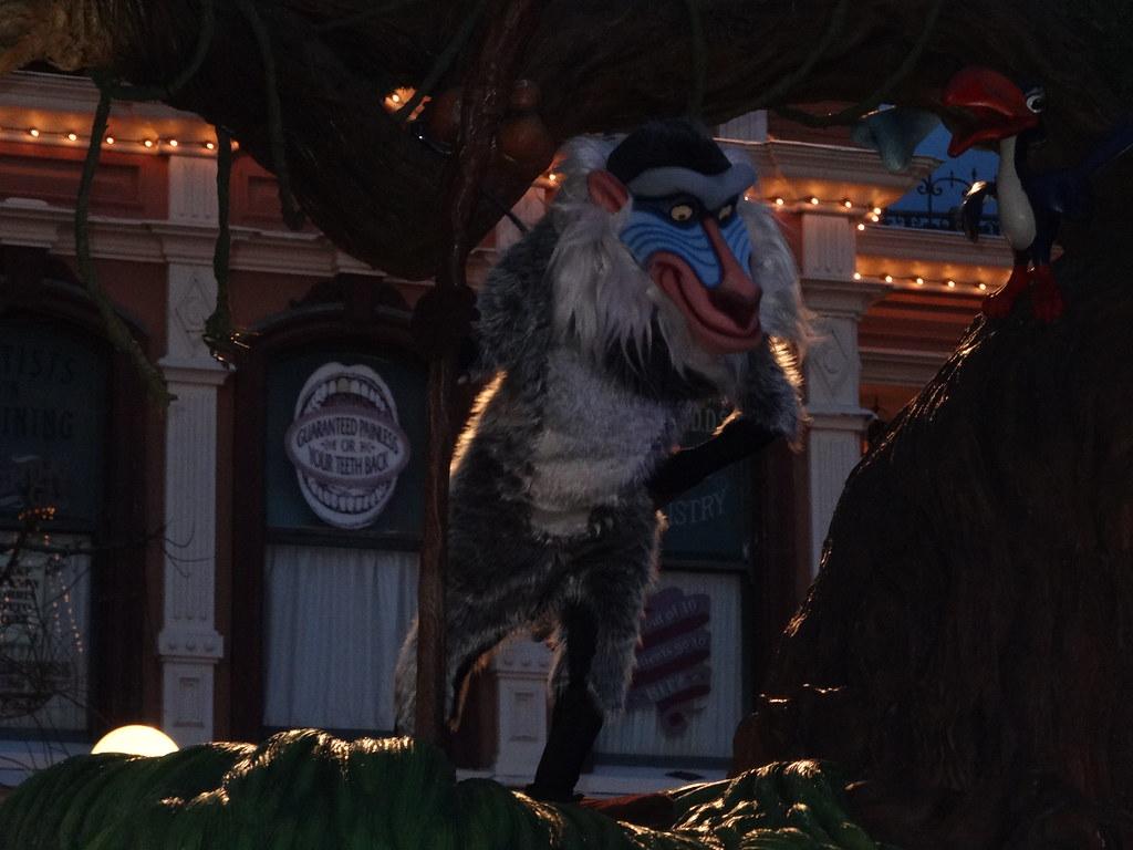 Un séjour pour la Noël à Disneyland et au Royaume d'Arendelle.... - Page 4 13695578253_6a160f9d91_b