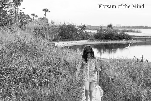 Girl with Net - Flotsam of the Mind