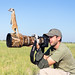 Photographing Meerkats by Burrard-Lucas Wildlife Photography