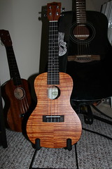 cuatro, string instrument, ukulele, acoustic guitar, guitar, acoustic-electric guitar, bass guitar, string instrument,