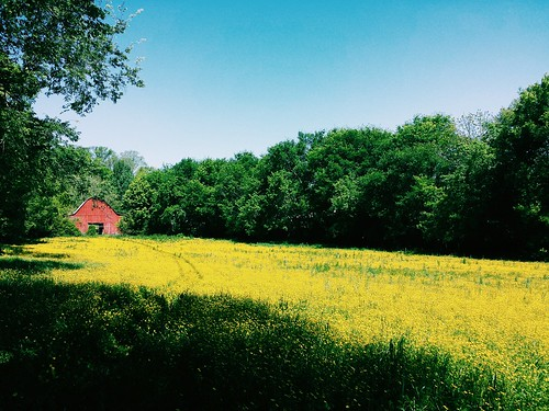 beauty landscape spring outdoor farm prairie