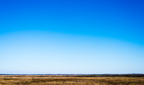 blue sky outdoors landscapes florida gainesville impression d800 paynesprairie lowhorizon nikond800 littletinperson