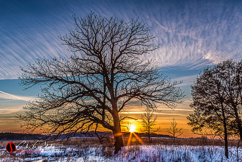 trees winter sunset snow ice nature wisconsin clouds canon landscape frozen unitedstates eagle horizon wi landscapephotography discoverwisconsin travelwisconsin 5dmarkiii andrewslaterphotography paradisespringnaturetrail
