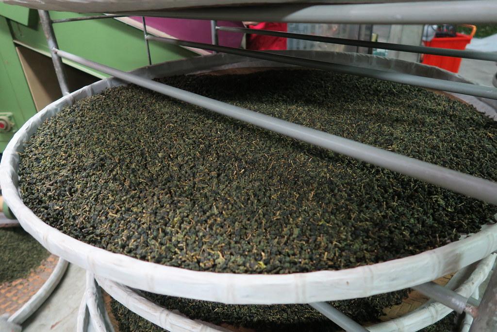 十三製茶 (40)