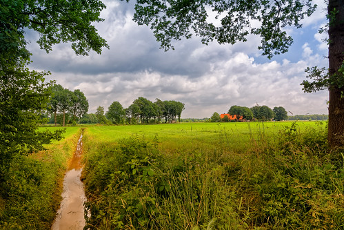 trees water grass clouds landscape ditch nederland meadow nl overijssel tubbergen
