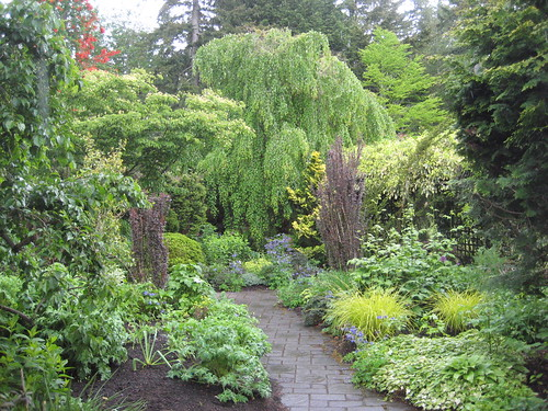 Mixed beds with weeping birch in background