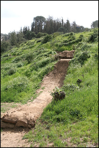 Balboa BMX Trails (11)