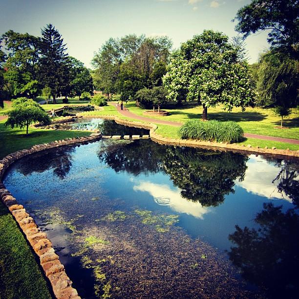 Allentown Rose Garden Pre Rain Lehighvalley Iglv