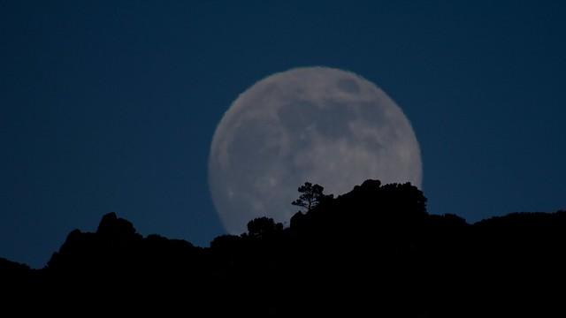 Superluna / Supermoon 2013. The Strawberry Moon