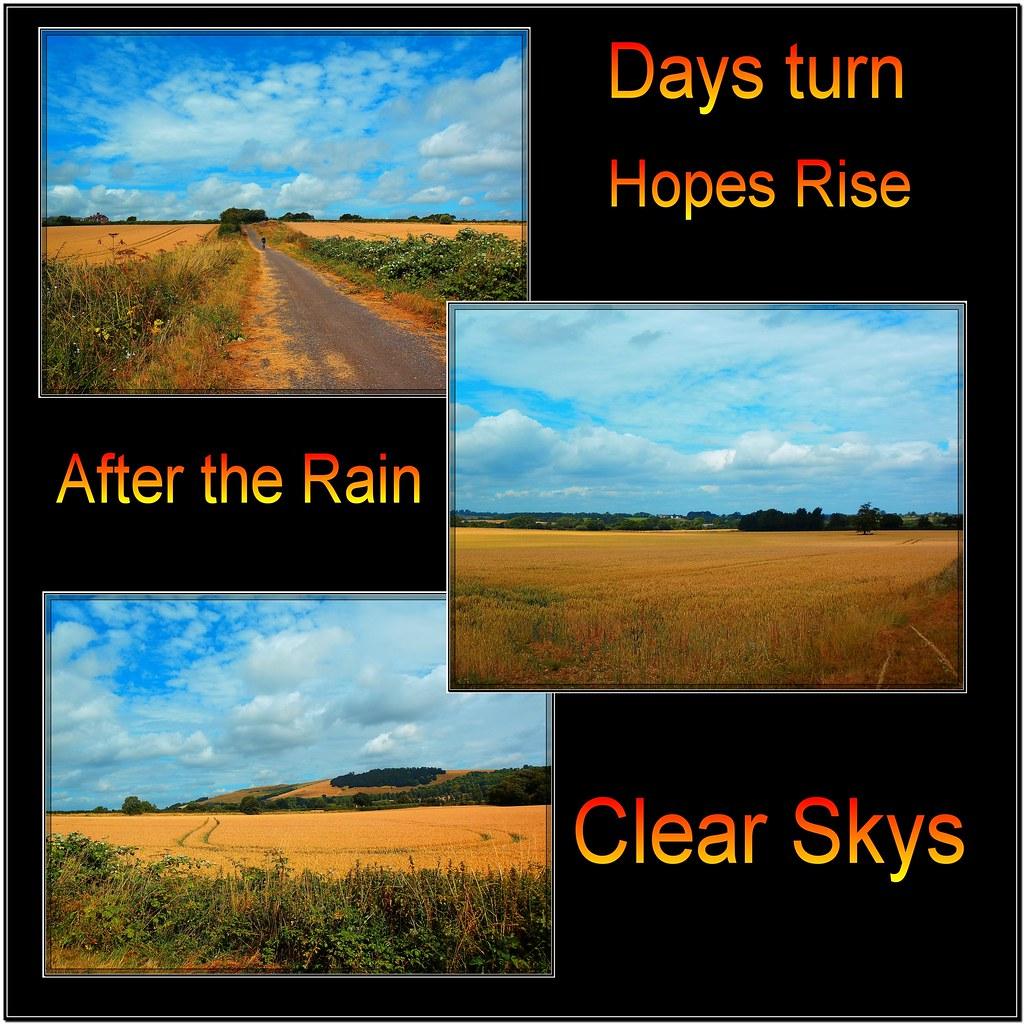 Clear Skys