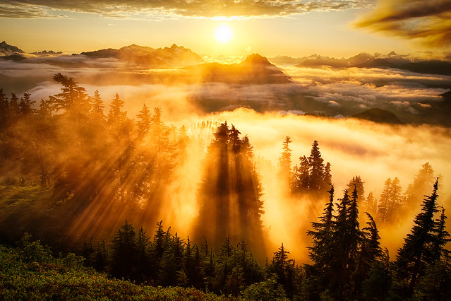 Evergreen Mountain Lookout Sunset by Michael Matti