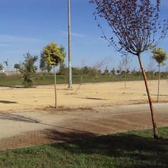 Parque de Vega de Triana
