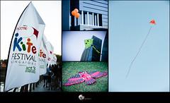 NTUC Kite Festival 2013