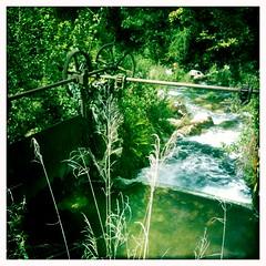 River - 08Sep10, Charabote (France)