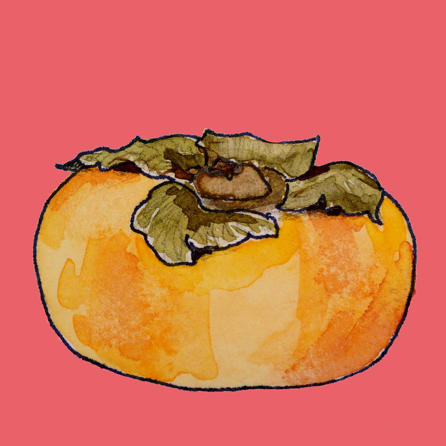 painting of a persimmon