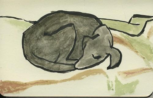 sleeping dog by Bricoleur's Daughter