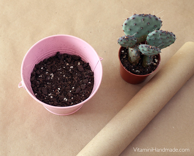 DIY Valentine Succulent Planters with free printable!