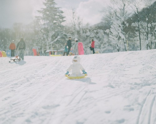 Playing on a sled