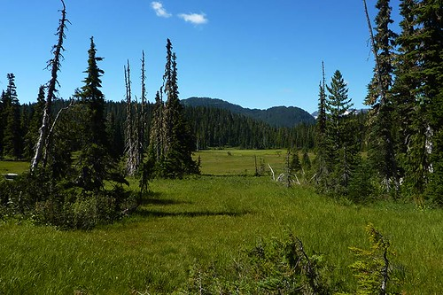 Paradise Meadows, Strathcona Provincial Park, Central Vancouver Island, British Columbia, Canada