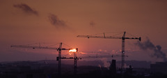 Construction Cranes and Sun  -  Leica M (240), Nikon 180mm