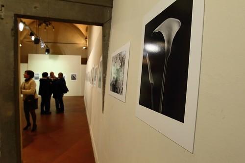 2014-03-22 inaugurazione mostra Maurizio Signorini - foto di Daniele Tirenni-35