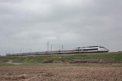 TGV SE N°023 / Socx