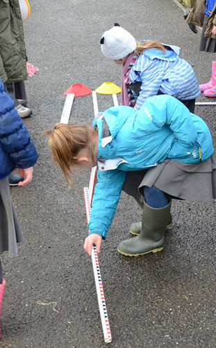 Y1 Measure a Dinosaur
